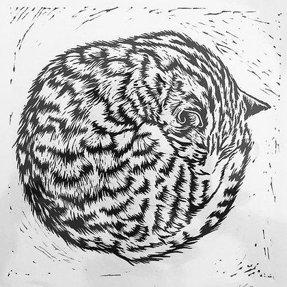 Katharine Green Sleeping Cat Linocut - Cat Nap