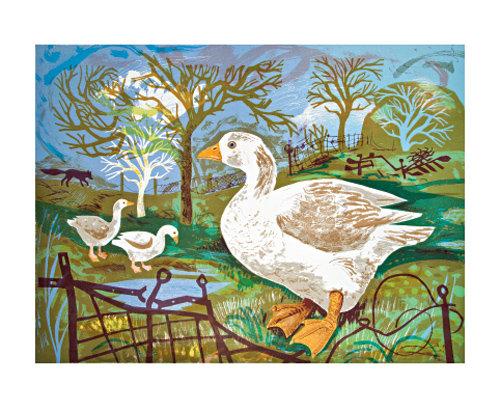 Mark Hearld - Card - Orchard Goose / Blank Card