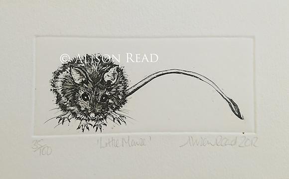 Alison Read Printmaker - Little Mouse