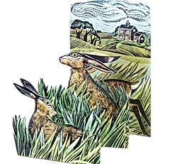 angela-harding_3d-folding-cards_hares_Ch