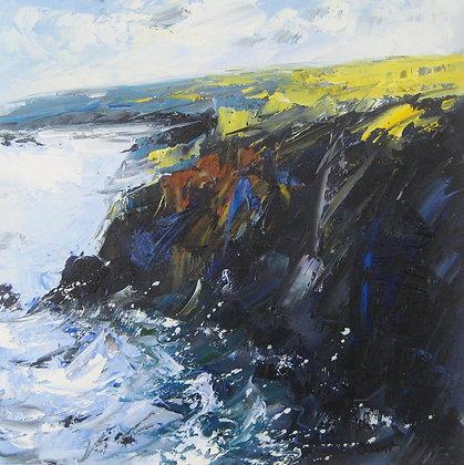 Debbie Scott - Cornwall Coastal Path