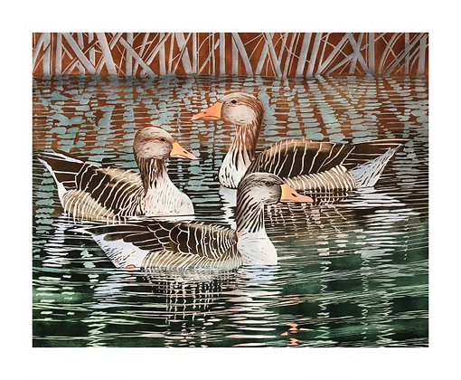 Greylags Geese - by Lisa Hooper - Single Card