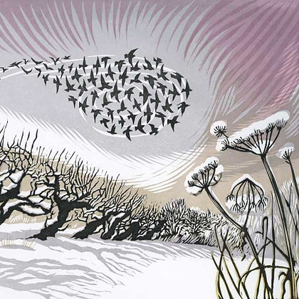 Niki Bowers - Midwinter Starlings - Art Angels
