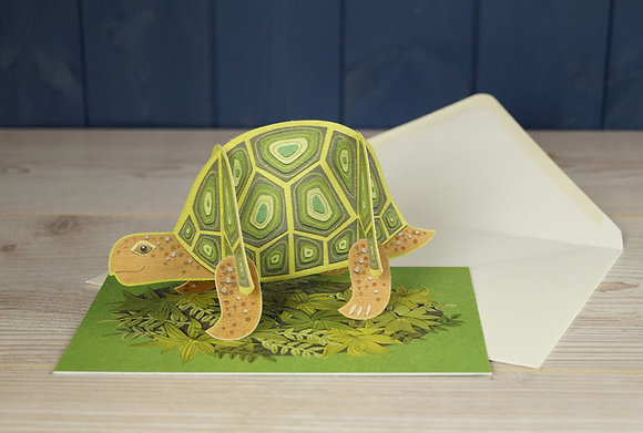 Tortoise - Pop Out 3D Card by Alice Melvin