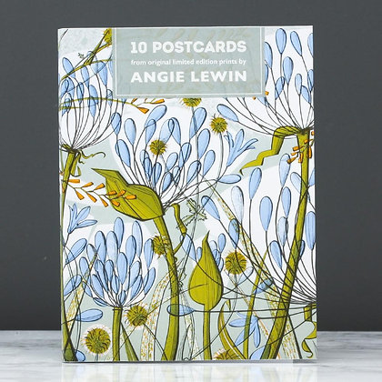 Agapanthus Front Cover Angie Lewin postcard book of Prints