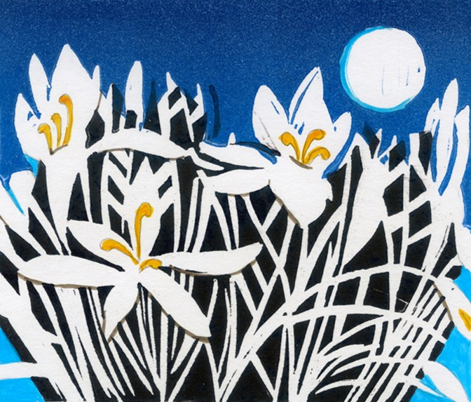 White-Crocus-Linda Richardson-Printmaker