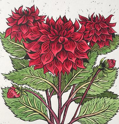 Katharine Green - Dahlia Flowers Linocut