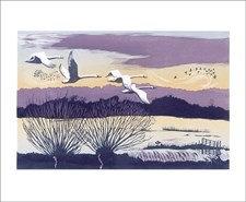 Niki Bowers-Winter Swans Art Angels Cards