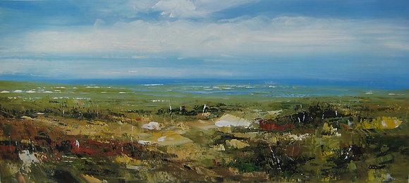 Debbie Scott - Across The Marsh