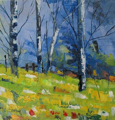 Debbie Scott - Spring Birch
