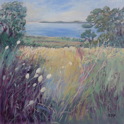 Sue Walker - Approaching The Sea