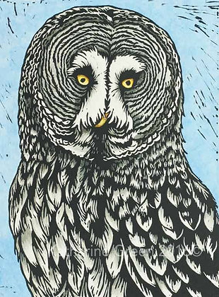 Katharine Green - The Great Grey Owl - Linocut