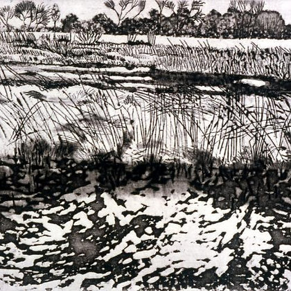 Ivy Smith - Whitlingham Marsh in Snow