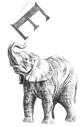 Daisy Courtauld - E is for Elephant