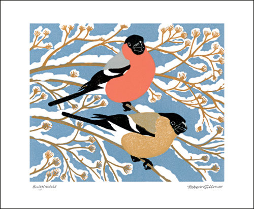 Winter Bullfinches - Robert Gillmor - Printmakers Cards