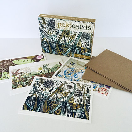 Angie Lewin - Boxed Postcards Set - From Original Prints