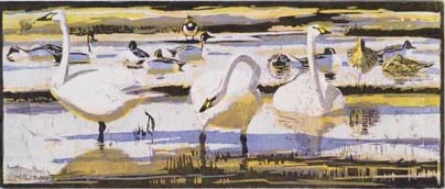 Robert Greenhalf - Berwick's Swans & Pintails
