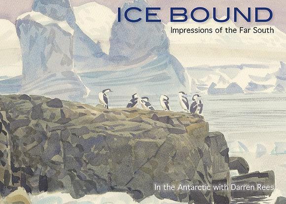 Darren Rees - Icebound