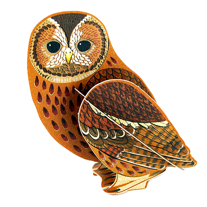 Tawny Owl - 3D Pop Out Card by Alice Melvin