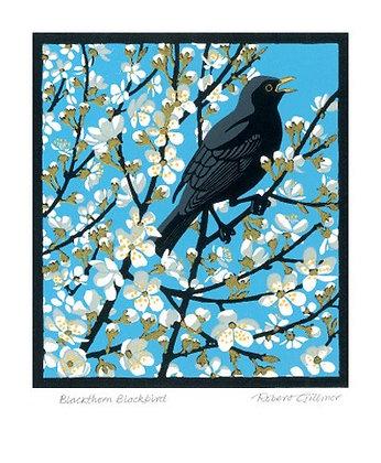 Robert Gillmor- Blackthorn Blackbird - Single Card