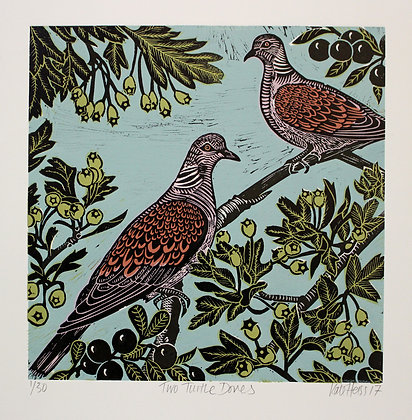 Kate Heiss - Two Turtle Doves