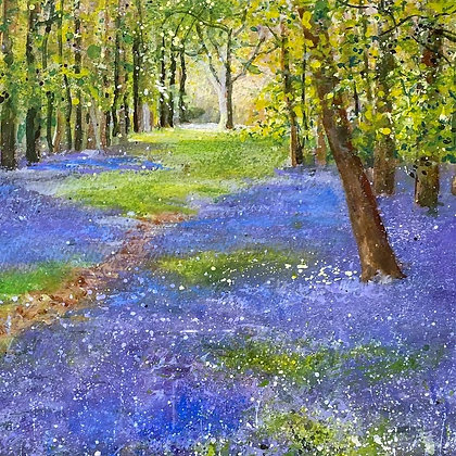 Bluebell Wood - Marion Shave Original Watercolour