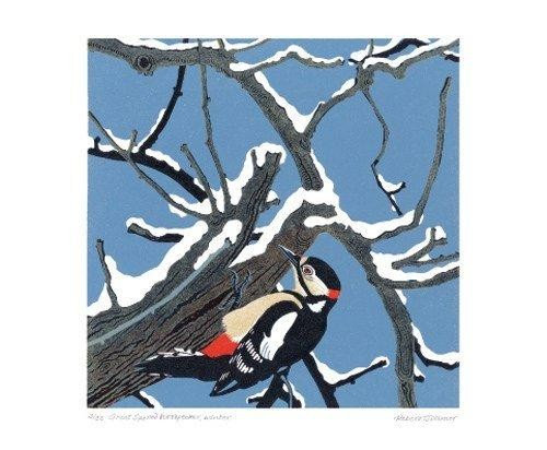 Great Spotted Woodpecker - Robert Gillmor - Christmas Cards