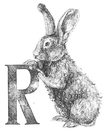 Daisy Courtauld - R is for Rabbit