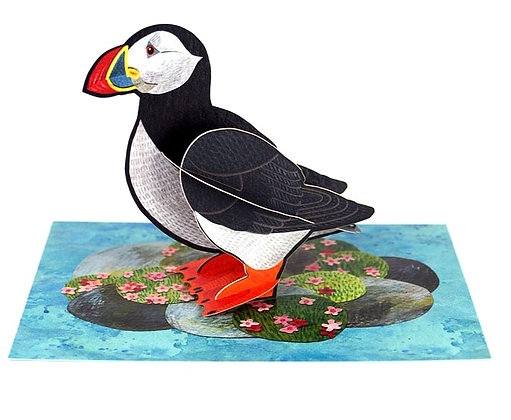 Puffin - 3D Pop Out Card by Alice Melvin