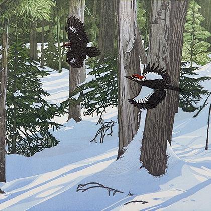 Chasing Daylight - Winter - Woodpecker - Printmakers Card