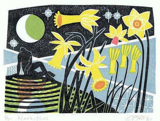 """Clare Curtis """"Narcissus"""""""