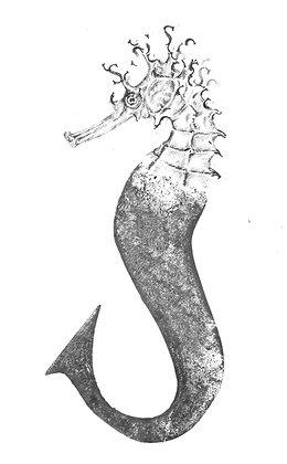 Daisy Courtauld - S for Seahorse