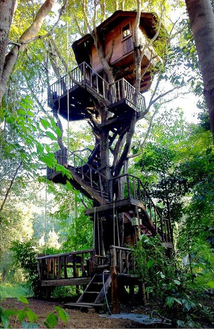 thailand-treehouse