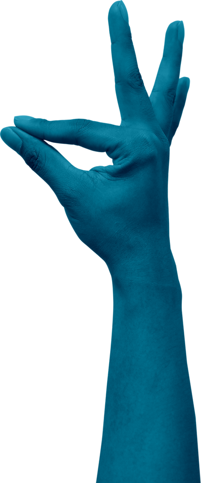 Canva - Human Hand Gesture.png