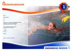 zwemmendredder1.jpg