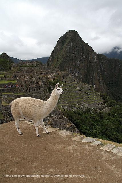 Machu Picchu-Peru-1-w.jpg