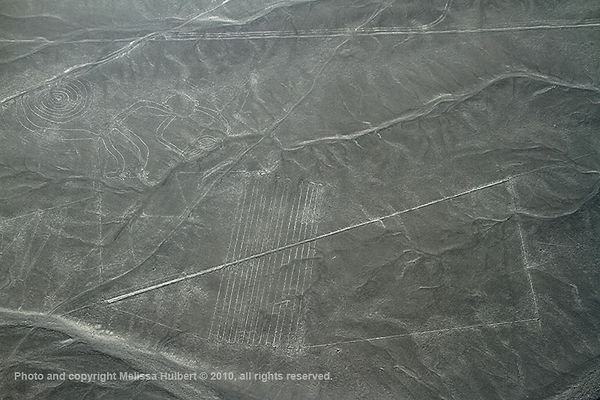 Nazca_Peru-8-w.jpg