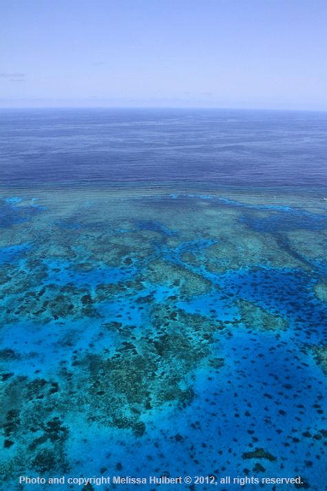 Barrier Reef-w.jpg
