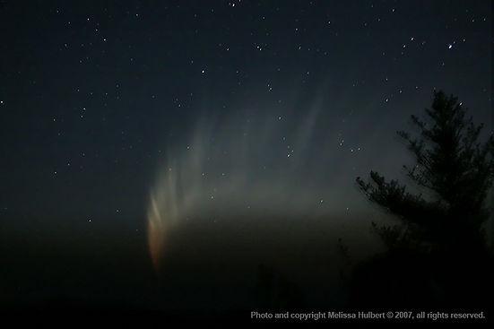 Comet McNaught 20Jan07 - wide2-w.jpg