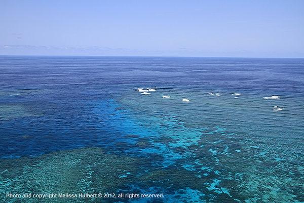 Barrier Reef-3-w.jpg