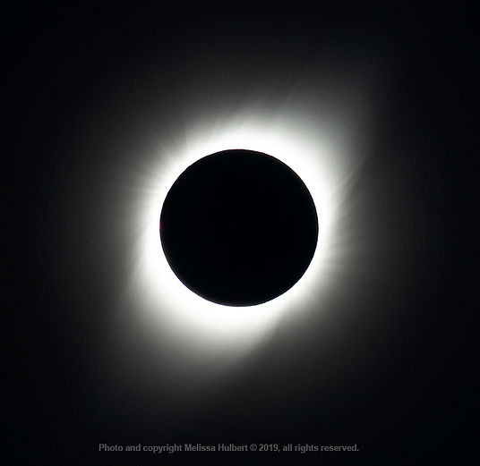 Vicuna-Chile-Eclipse-Totality-4-w.jpg