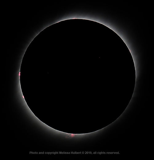 Vicuna-Chile-Eclipse-Totality-2-w.jpg