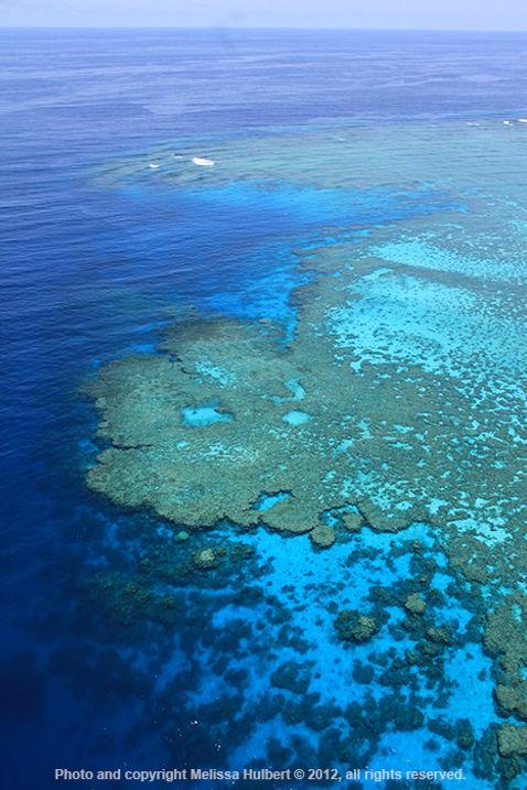 Barrier Reef-2-w.jpg