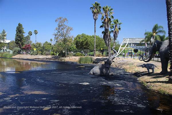 La Brea Tar Pits-LA-USA-1-w.jpg