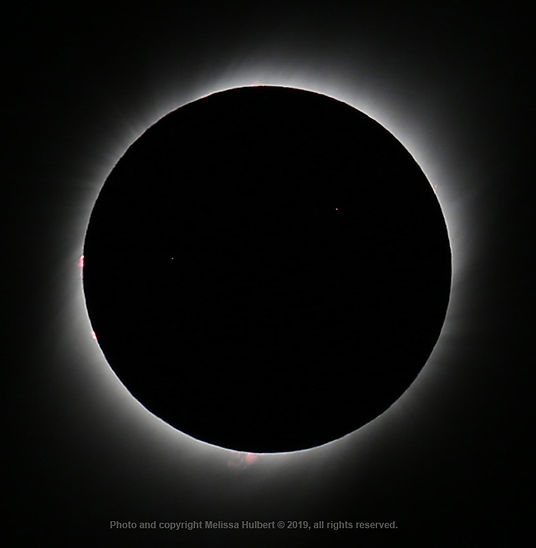 Vicuna-Chile-Eclipse-Totality-1-w.jpg