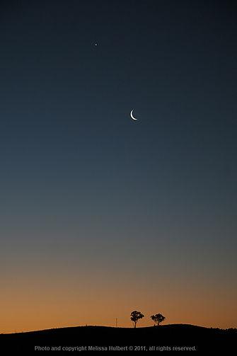 moon - venus4-w.jpg