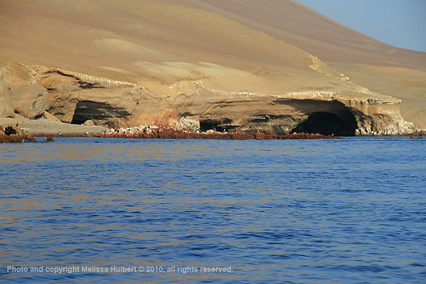 Ballestas Islands_Peru-1-w.jpg