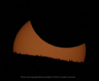 Vicuna-Chile-Eclipse-Setting-2-w.jpg
