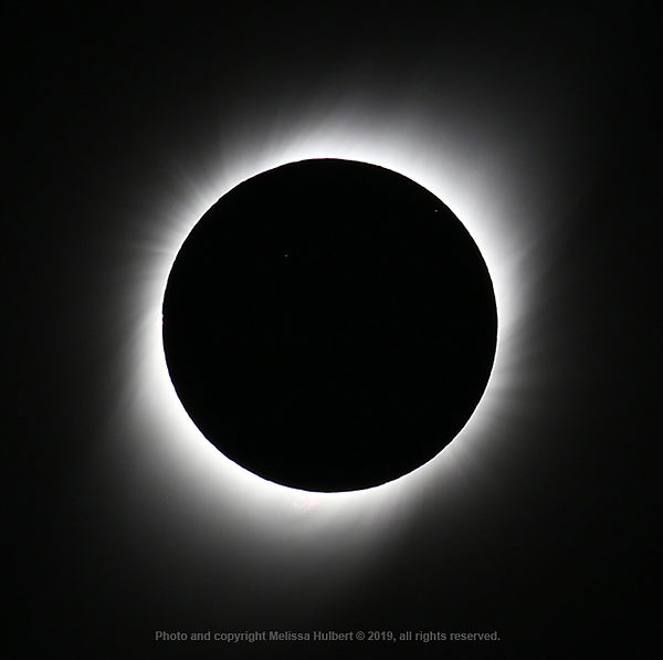 Vicuna-Chile-Eclipse-Totality-3-w.jpg