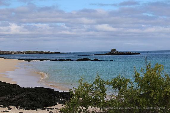 Galapagos-1-w.jpg